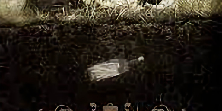 "Holocaust film - ""Inside Hana's Suitcase"""