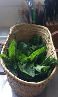 Home Grown Herbs