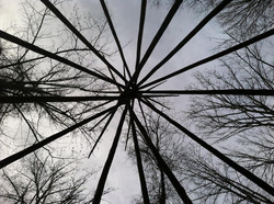 Looking up at my tipi poles :)