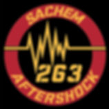 aftershock logo 2017_edited_edited_edite