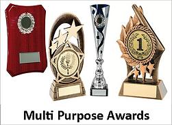 Multi purpose awards.png