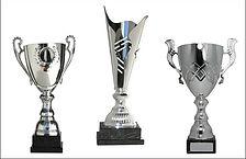 presentation cups.jpg