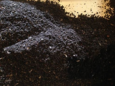 Organic fertilizer loaded with beneficial microbes to feed your plants and heal the soil.