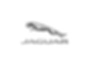 Jaguar Cliente agência Alfaiatari Digital