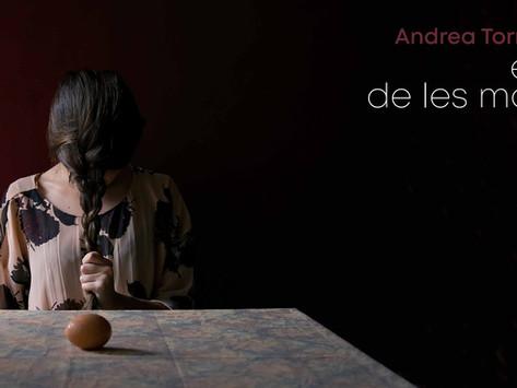 EL SILENCI DE LES MAGRANES d'Andrea Torres Balaguer