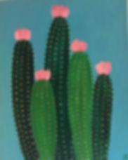 cactus san perdo.jpg