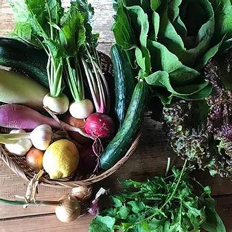 野菜セット.webp