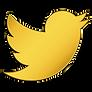 TwitterGold.png