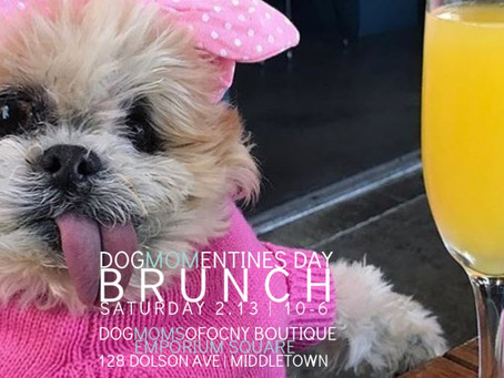 A Valentine's Day Event You Won't Want To Miss: DogMomentine's Day Brunch at the Emporium Square!