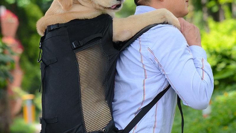 Adjustable Backpack for Dog Carrier