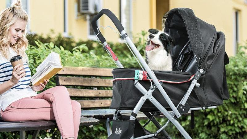 Outdoor Stroller for Big Dog (One-Key Folding)