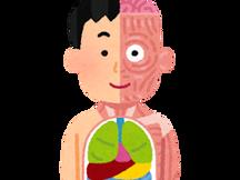 ヒトの身体(からだ)を調(しら)べる方法(ほうほう)
