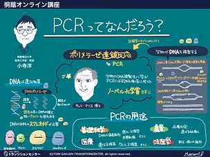 PCRってなんだろう?.png