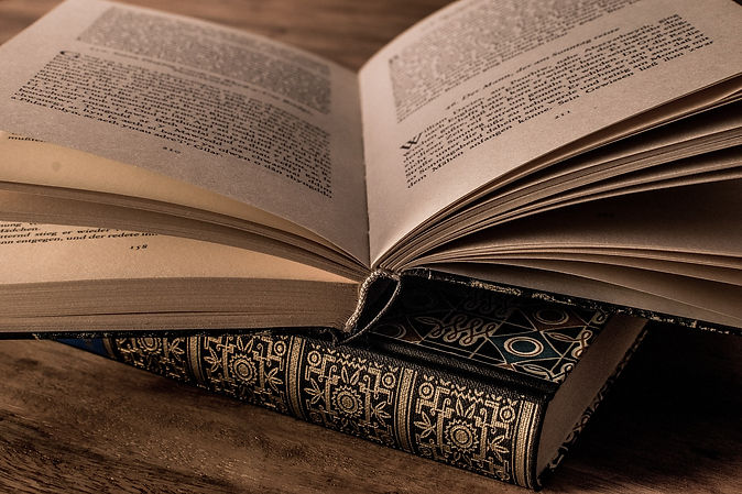 literature-g09f5264a6_1920.jpg