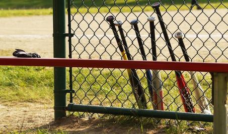 2018 Santa Cruz Pony Baseball Bat Rules