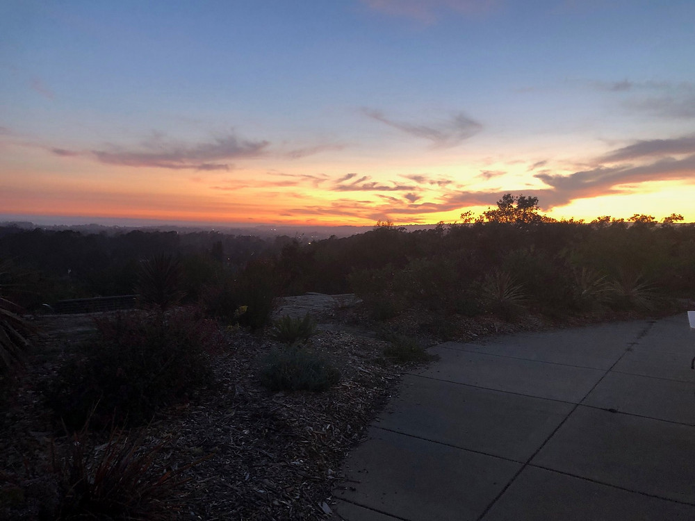 Santa Cruz County sunset from the Cabrillo College Horticulture Center