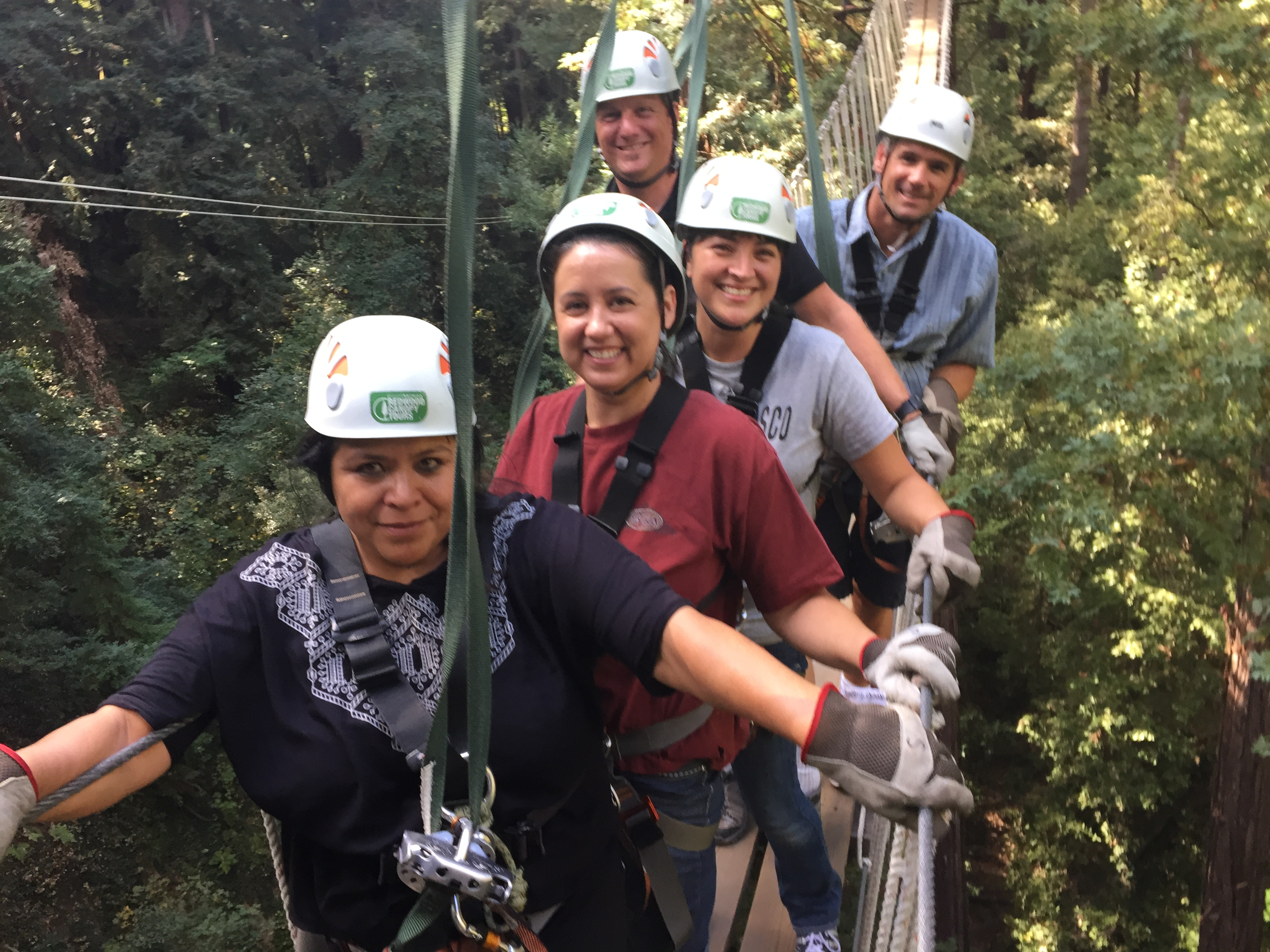 Redwood Canopy Zipline