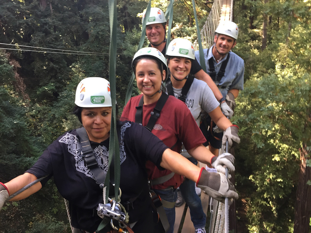 Mount Hermon Redwood Zipline