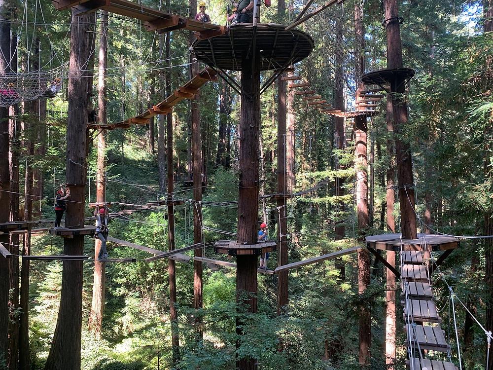 Mount Hermon Adventures team building ropes course
