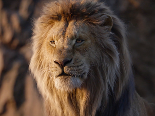 TOP 15 LION KING MOTIVATIONAL/INSPIRATIONAL QUOTES