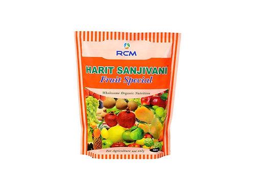 Harit Sanjivani Fruit Special(500g)