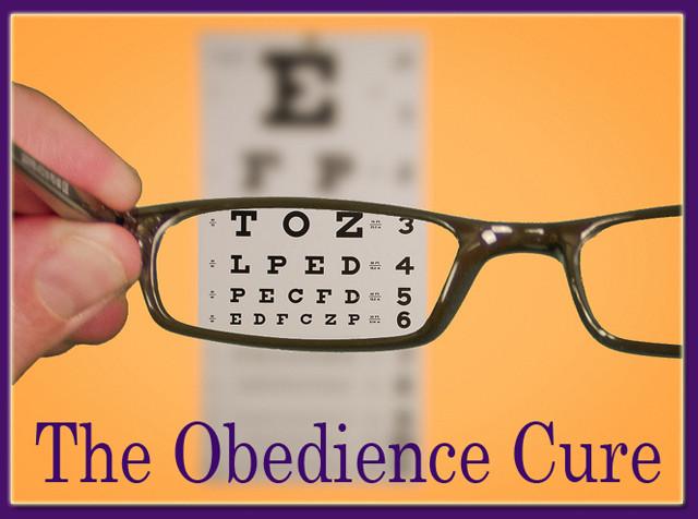 obediencecure.jpg