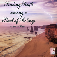 Finding Truth Among A Flood of Feelings