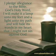 I Pledge Allegiance...