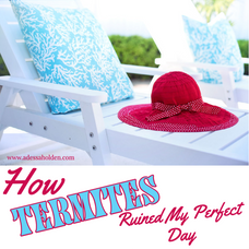 How Termites Ruined My Perfect Day