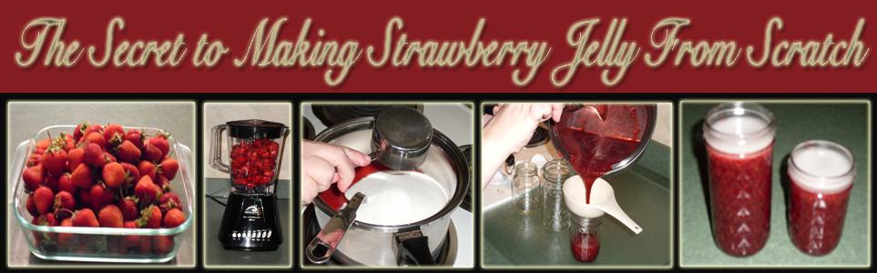 strawberryjellyfinal copy.jpg