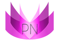 pn transparent logo (2).png