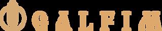 Logo_GALFIM_2_plus.png