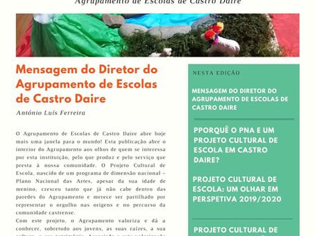 Plano Nacional das Artes - um ano em perspetiva! Newsletter julho 2020