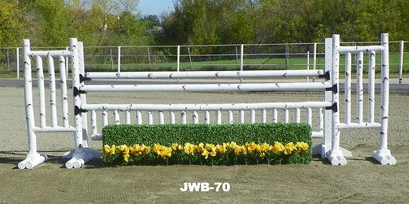 10' Birch 8 jump set