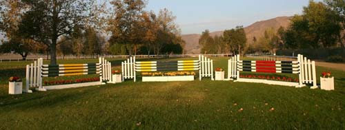 Set of 20 x 10' Painted striped color wood rails