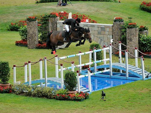 horse-and-rider-show-jumping.jpg