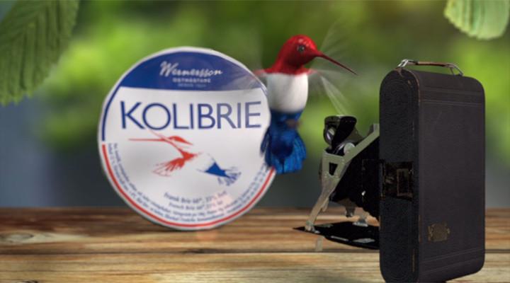 Kolibrie second campaign.jpg