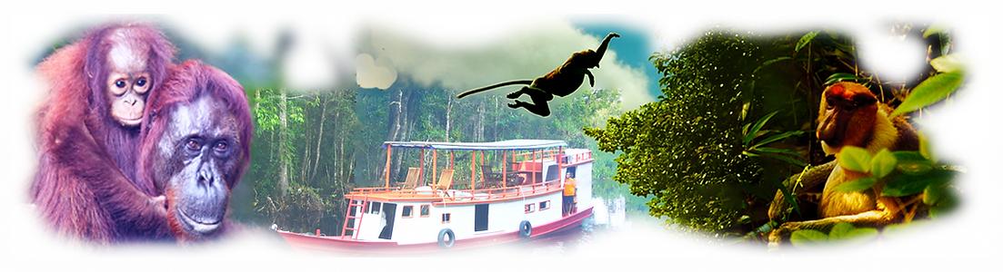 Borneo 2.png