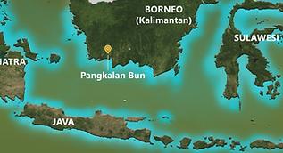 Borneo1.png