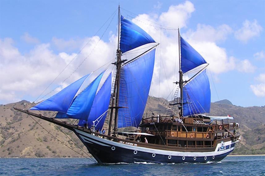Sea Safari VII.jpg