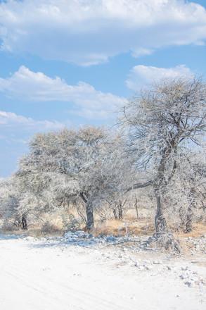 Namibia, 2014