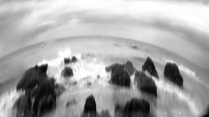 Sea dream 7