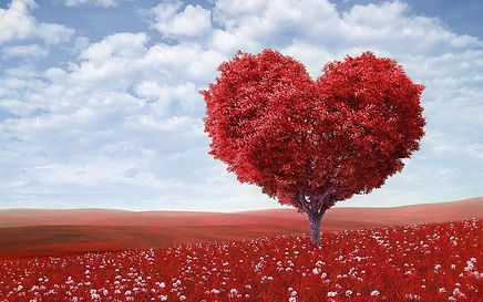 heart-shape-1714807_1280.jpg