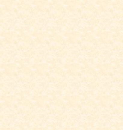 Parchment texture.png