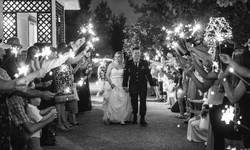 Bailey Wedding-Reception+Send Off-317