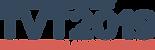 TVT19-satellite_logo.png