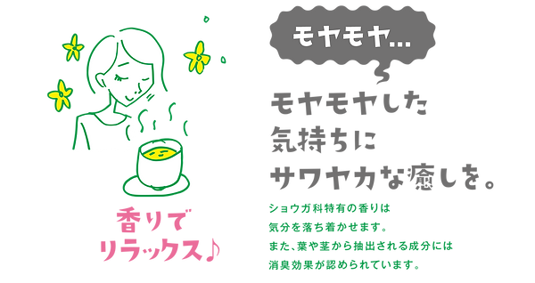 moyamoya_02.png