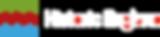 HE-logo (3).png