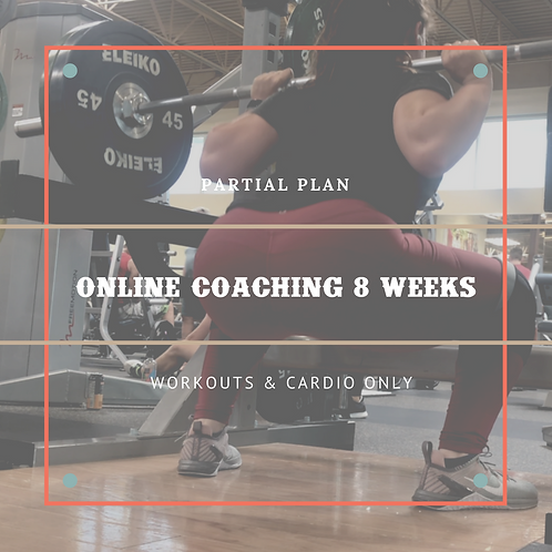 Partial Online Coaching - 8 Weeks