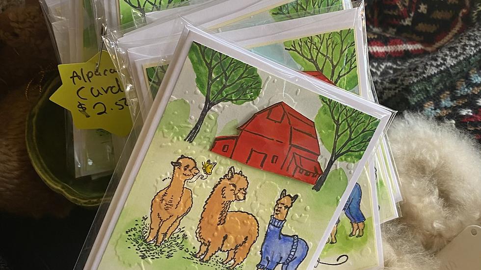 Handmade alpaca cards